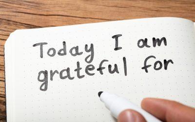 Liz Johnson's Reasons for Gratitude for 2020