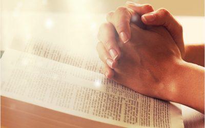 Liz Johnson's Annual Holiday Prayer